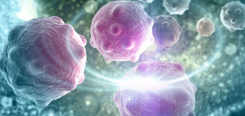 تقنية جديدة تفتح باب الأمل علاج سرطان الثدي في أسبوع