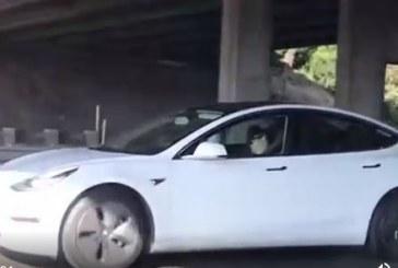 يغط في نومه أثناء القيادة ويسبب ذعر على الطريق .. فيديو